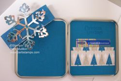 Giftcardtin09in