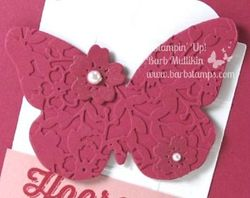 Perfect_pairings_butterfly_close