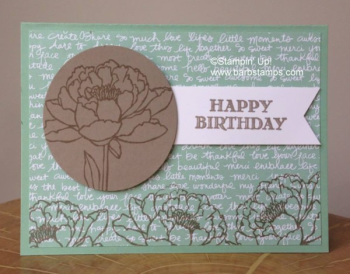 Remarkable You stamp set with Mint Macaron and Tip Top Taupe 2015-2017 In Colors area retiring at the end of May.  Purchase your In Color products in my store at www.shoppingwithbarb.com #barbstamps #stampinismyjob