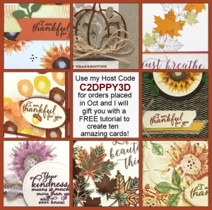 Free 10 project tutorial for all orders placed with me in October that use my Host Code C2DPPY3D