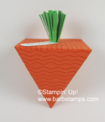 Pyramid_pals_carrot_front