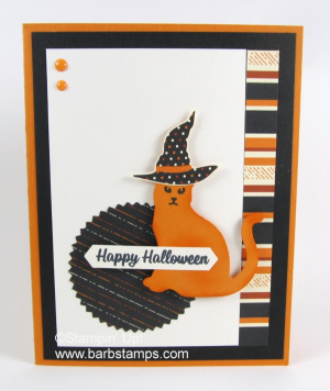 Fussy cut hats from the Spooky Night DSP and then add color with your Stampin' Write Markers!  Details and more pics can be found on my blog at www.barbstamps.com  It's my 10 year Blogaversary!!!