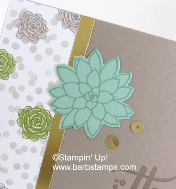 Succulent Garden simple card.  This suite is on the retiring list.  See the details on my blog at www.barbstamps.com