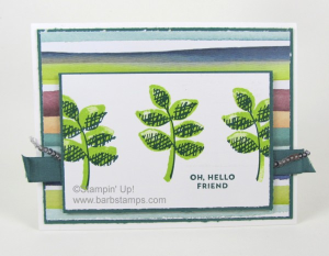 Video on my blog showing you 24 cards made with products from the Naturally Eclectic Suite.  View it on my blog www.barbstamps.com.  Thanks for looking! #naturallyeclectic #barbstamps