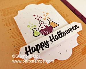 Fun card using the Spooky Cat stamp set, more pictures , cutting directions and instructions are on my blog www.barbstamps.com #stampinup #spookycat #barbstamps #halloween