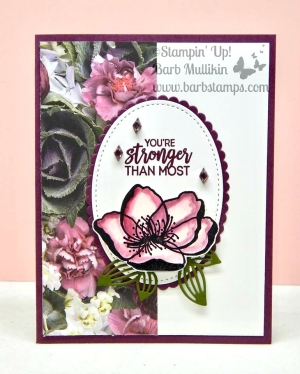Buy 3 Get 1 FREE DSP Sale in July get your gorgeous papers in my store www.shoppingwithbarb.com