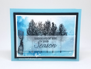 VIDEO on my blog for this amazing card that uses our Brusho Crystal Colour. More pics too!  www.barbstamps.com #barbstamps #winterwoods #stampinup #brusho