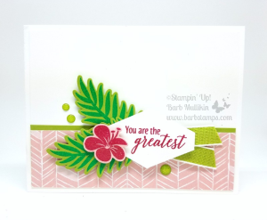 Tropical Chic meets the New In Color Stampin' Emboss Powders!  I made this card during my Facebook Live show, check out all the details on my blog and view the video there.  www.barbstamps.com #stampinup #barbstamps #tropicalchic #grannyapplegreen