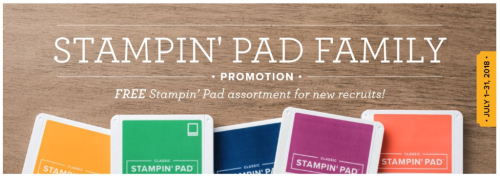 FREE ink pads when you join my team in July.  www.barbstamps.com