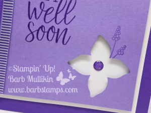 Pop of petals get well purple
