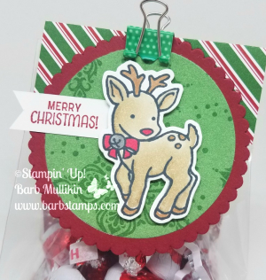 Video on my blog for this cure candy treat.  www.barbstamps.com #seasonalchums #stampinup #barbstamps #gusseted bags