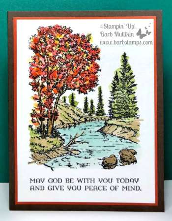 Gorgeous watercolored image from the Peaceful Place stamp set, more details on my blog www.barbstamps.com