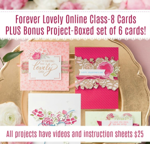My Forever Lovely Online Class is ready, only $25 for 8 cards PLUS a boxed set of 6 cards. Join my Stampin' Up! Team during Sale-a-bration for only $99 and get $175 in your kit!! www.barbstamps.com