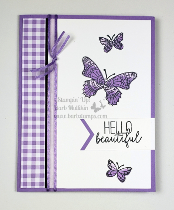 VIDEO with 47 cards that all use the Butterfly Gala Bundle from Stampin' Up! www.barbstamps.com #stampinup #barbstamps #butterflygala