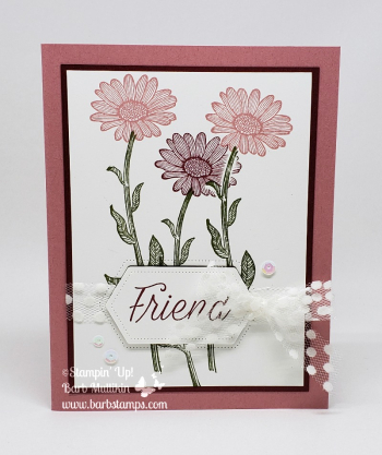 VIDEO Daisy Lane Bundle www.barbstamps.com #stampinup #daisylane