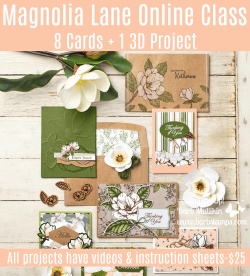 Magnolia Lane Online Class $25 for 8 cards and 1 3D project www.barbstamps.com