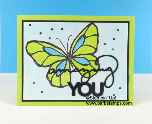 Beautiful_day_turqlime_butterfly1