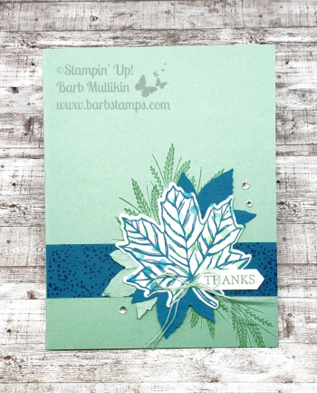 check out my online class with this bundle www.barbstamps.com