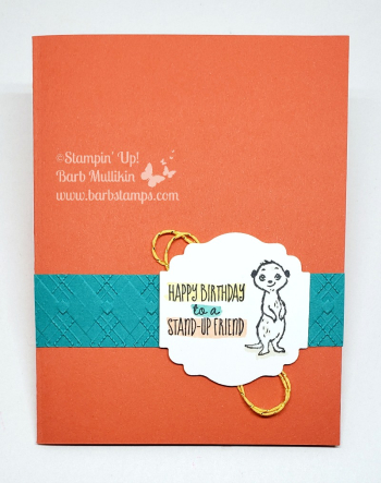 Video for this super cute card on my blog www.barbstamps.com #gangsallmeer #stampinup #meerkats #birthdaycard