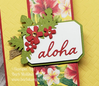 VIDEO for this fun fold tropical oasis www.barbstamps.com