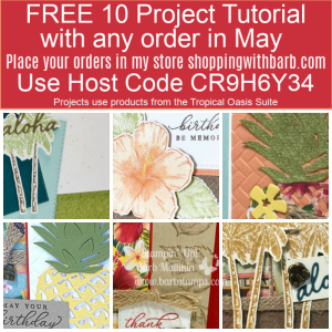 FREE 10 card tutorial using the Tropical Oasis Bundle www.barbstamps.com