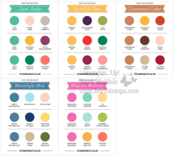 Color coach in colors