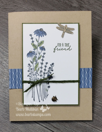 Dragonfly Garden Class To Go www.barbstamps.com #dragonflygarden #dandygarden