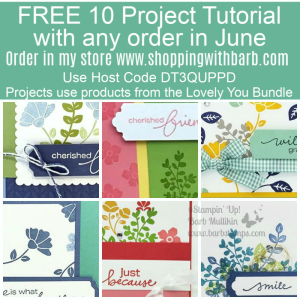 All orders at www.shoppingwithbarb.com earn this tutorial using a Brand New Bundle from the Stampin' Up! catalog. #lovelyyou #stampinup #barbstamps #lovelylabelspickapunch