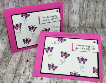 Fun with Hippo Happiness www.barbstamps.com #stampinup #hippohappiness #swaps #butterflies #magentamadness