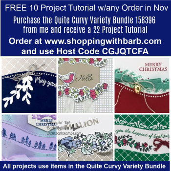 FREE file of Curvy projects with orders in November www.shoppingwithbarb.com