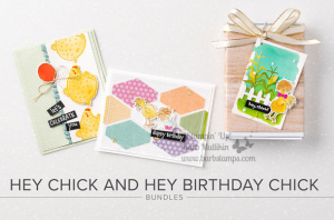 Order my All the Chicks Online Class www.barbstamps.com