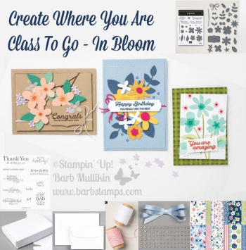 In Bloom Class To Go www.barbstamps.com