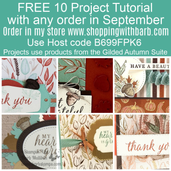 FREE file of projects when you order with me www.shoppingwithbarb.com