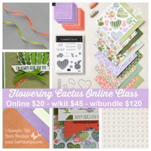 Order my Flowering Cactus Online Class www.barbstamps.com #floweringcactus #stampinup #productmedley