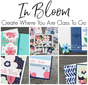In Bloom Class To Go $45 www.barbstamps.com